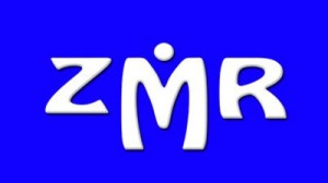 organizador.zmr